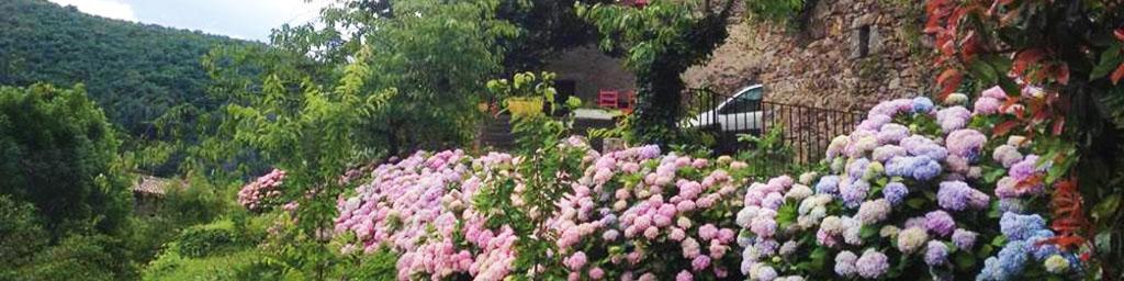 Habitation fleurie - Le Cagnel